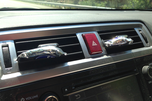 Candy-in-the-Car-Vents